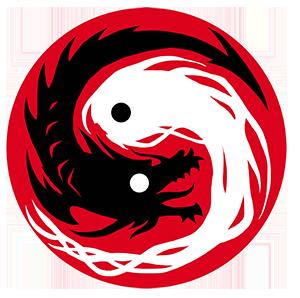 Kung Fu Lansingerland